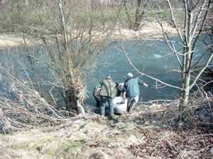 Frühjahrs Besatzmaßnahme der Sportfischer Interessengemeinschaft Hüsten e.V: